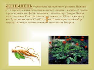 ЖЕНЬШЕНЬ - ценнейшее лекарственное растение. Название его в переводе с китайс