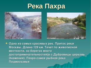 Река Пахра Одна из самых красивых рек. Приток реки Москвы. Длина 129 км. Тече