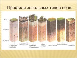 Профили зональных типов почв