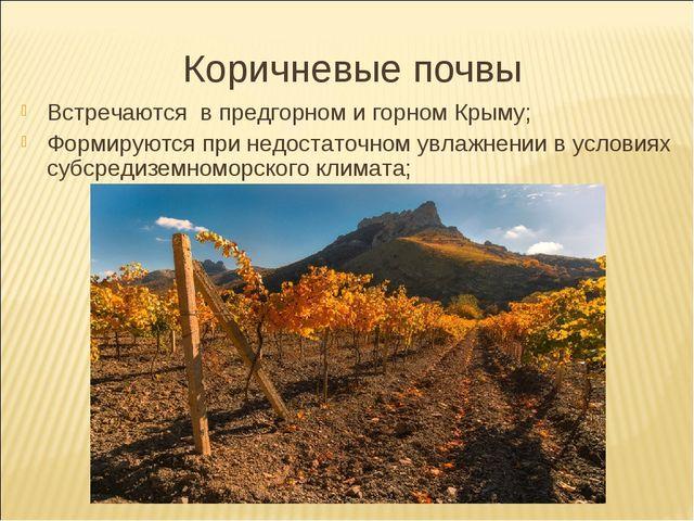 Коричневые почвы Встречаются в предгорном и горном Крыму; Формируются при нед...