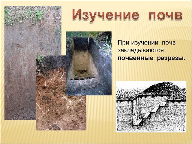 При изучении почв закладываются почвенные разрезы.