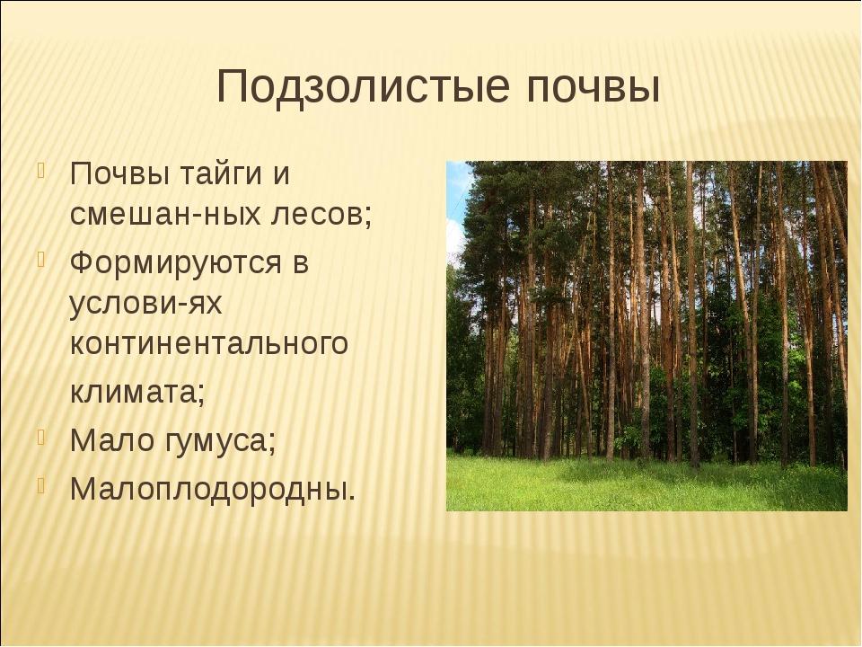 Подзолистые почвы Почвы тайги и смешан-ных лесов; Формируются в услови-ях кон...