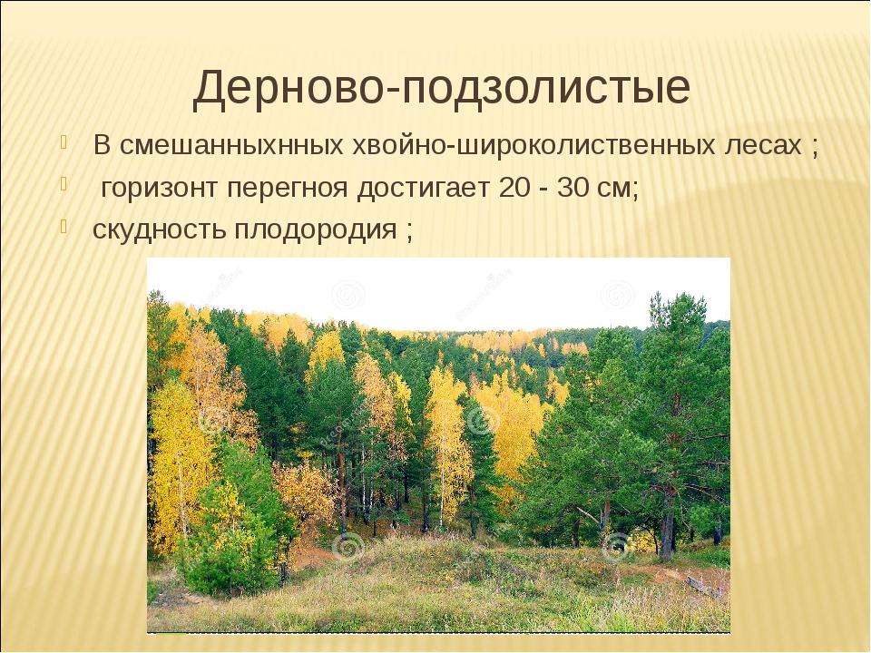Дерново-подзолистые В смешанныхнных хвойно-широколиственных лесах ; горизонт...
