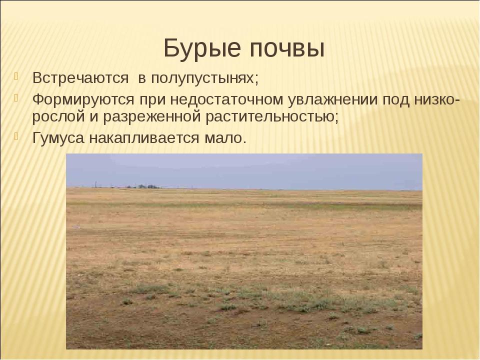 Бурые почвы Встречаются в полупустынях; Формируются при недостаточном увлажне...