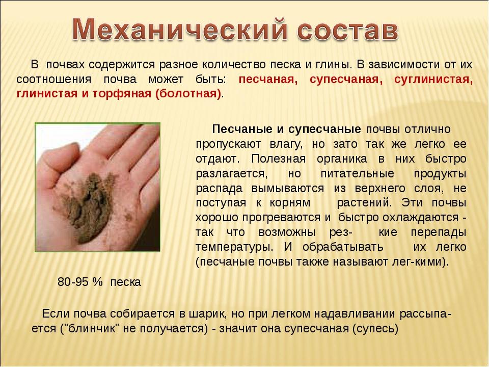 В почвах содержится разное количество песка и глины. В зависимости от их соо...