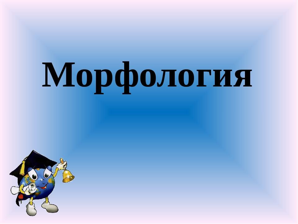 Морфология