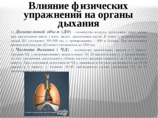 1) Дыхательный объем (ДО) – количество воздуха, проходящее через легкие при д