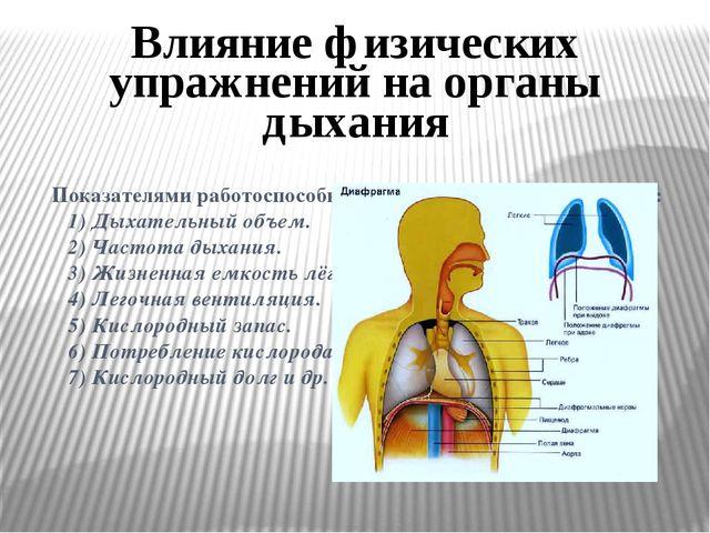 Показателями работоспособности органов дыхания являются:  1) Дыхательный об...