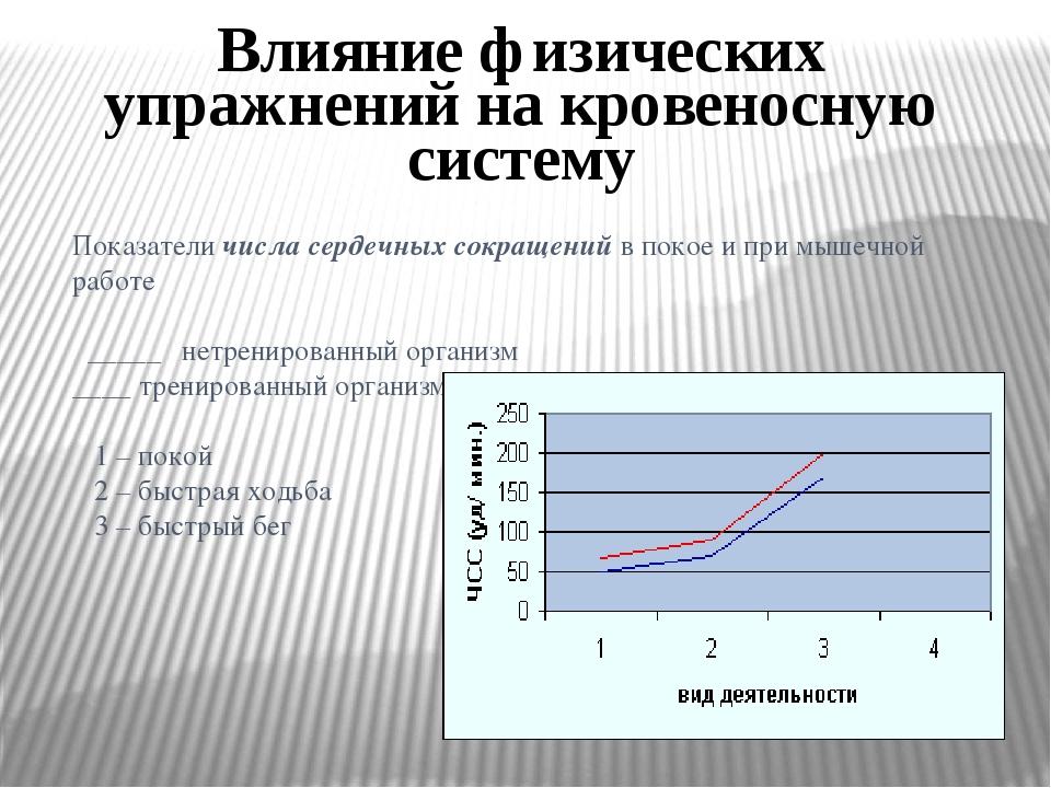 Влияние физических упражнений на кровеносную систему Показатели числа сердечн...