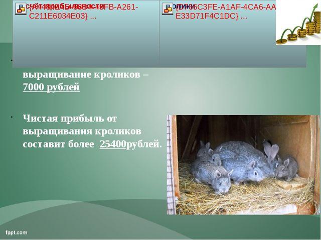 Расход за год на выращивание кроликов – 7000 рублей Чистая прибыль от выращив...