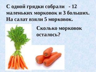 С одной грядки собрали - 12 маленьких морковок и 3 больших. На салат взяли 5