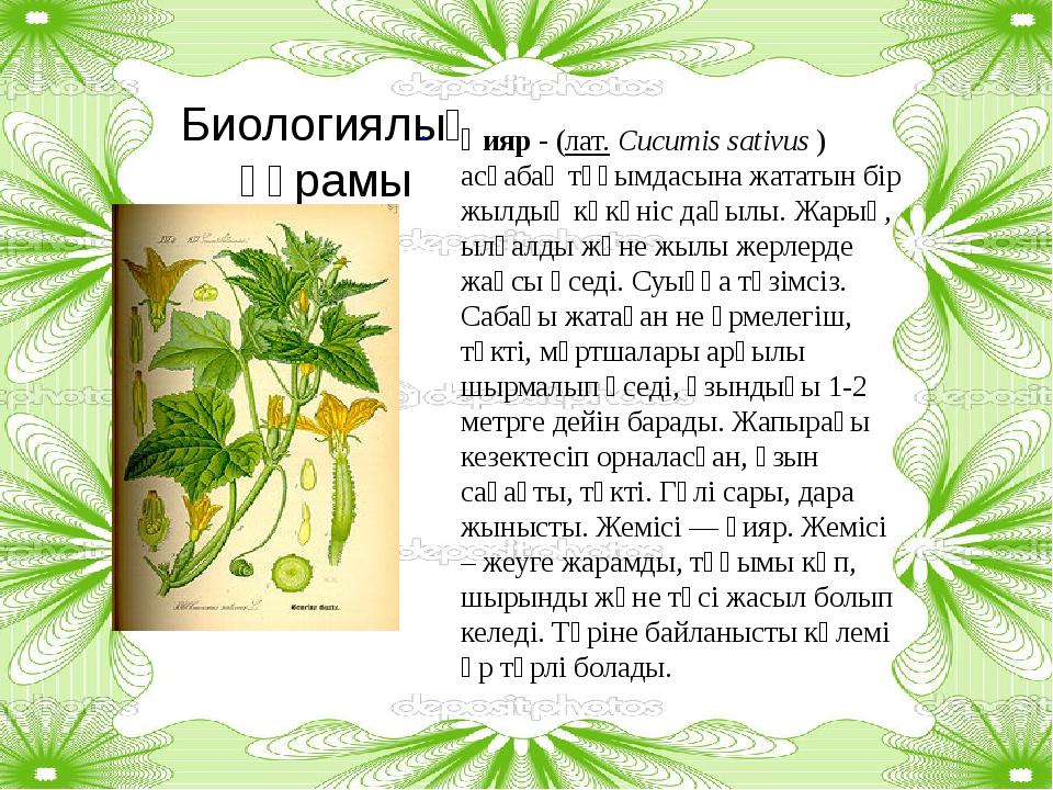 Биологиялық құрамы Қияр - (лат.Cucumis sativus) асқабақ тұқымдасына жататын...