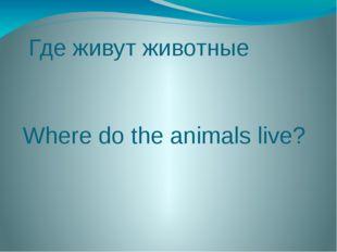 Где живут животные Where do the animals live?