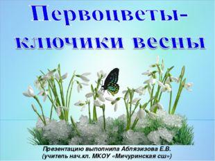 Презентацию выполнила Аблязизова Е.В. (учитель нач.кл. МКОУ «Мичуринская сш»)