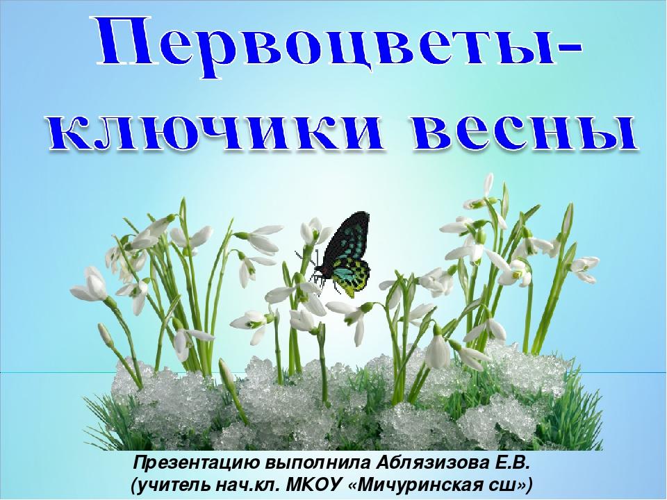 Презентацию выполнила Аблязизова Е.В. (учитель нач.кл. МКОУ «Мичуринская сш»)...