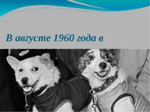 В августе 1960 года в космическое путешествие отправились собаки Белка и Стре