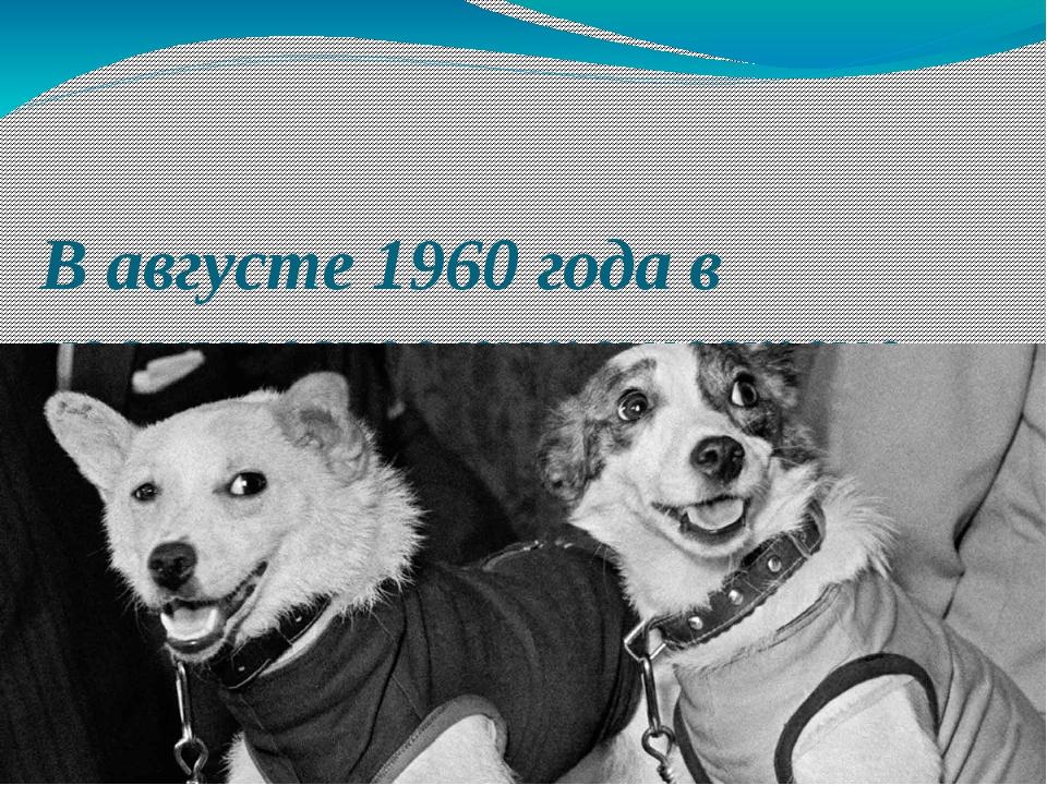 В августе 1960 года в космическое путешествие отправились собаки Белка и Стре...