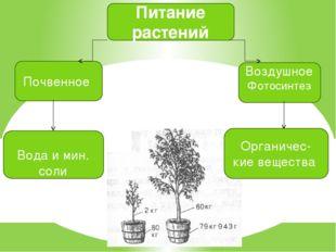 Питание растений Почвенное Воздушное Фотосинтез Вода и мин. соли Органичес- к