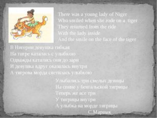 There was a young lady of Niger Who smiled when she rode on a tiger They retu