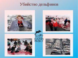 Убийство дельфинов http://img-fotki.yandex.ru/get/4134/137106206.2eb/0_bb6de_