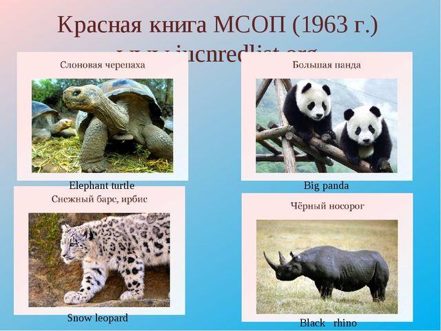 Красная книга МСОП (1963 г.) www.iucnredlist.org Elephant turtle Big panda Sn...