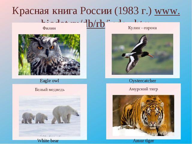 Красная книга России (1983 г.) www.biodat.ru/db/rb/index.htm Eagle owl White...