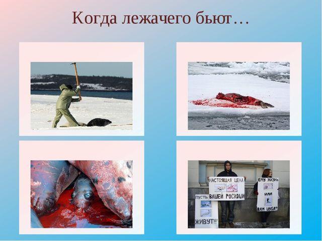 Когда лежачего бьют… http://www.ikd.ru/images/image/Piket%20belki.JPG Пикет h...