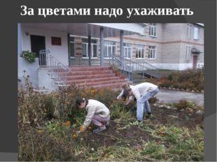 За цветами надо ухаживать