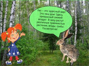 Лес – это чудесный мир! Это наш дом! Здесь прекрасный свежий воздух! В низу р