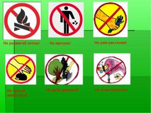 Не разжигай огонь! Не мусори! Не рви растения! Не трогай животных! Не лови б