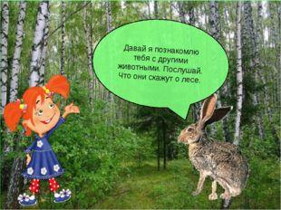 Давай я познакомлю тебя с другими животными. Послушай. Что они скажут о лесе.