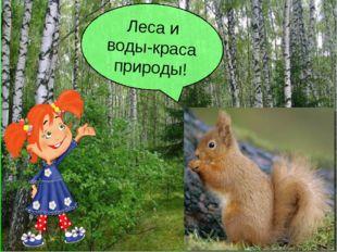 Леса и воды-краса природы!