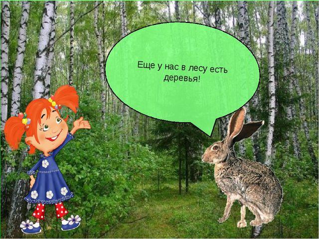 Еще у нас в лесу есть деревья!