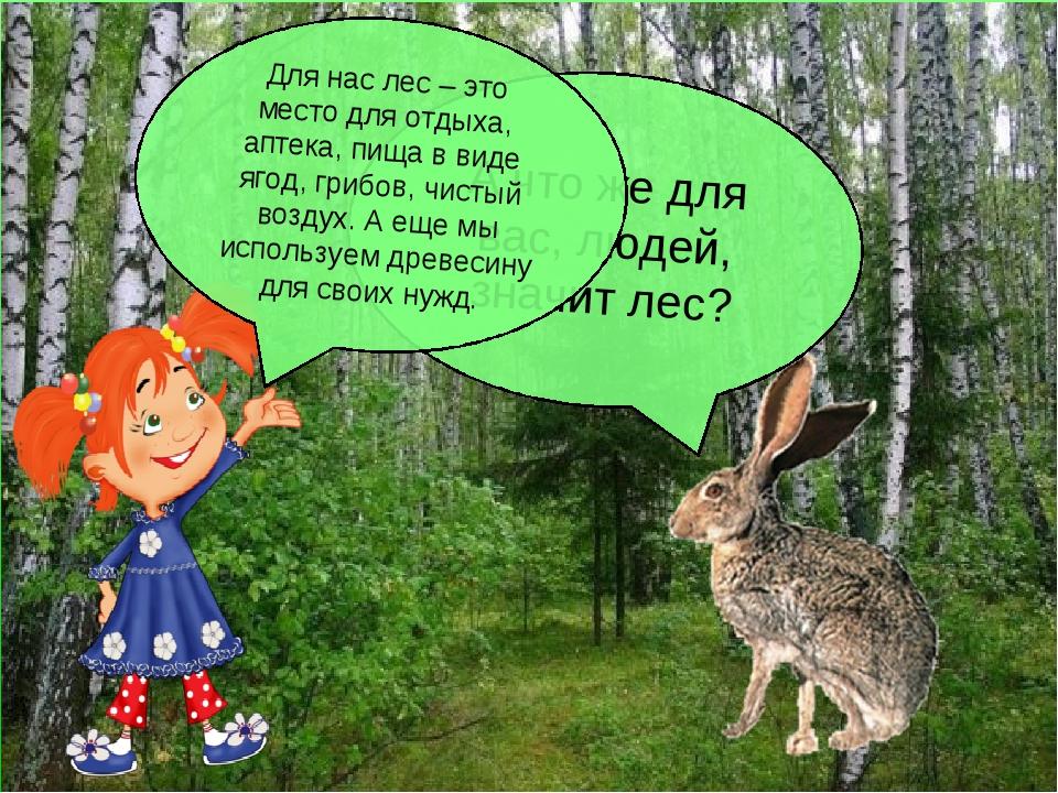 А что же для вас, людей, значит лес? Для нас лес – это место для отдыха, апте...