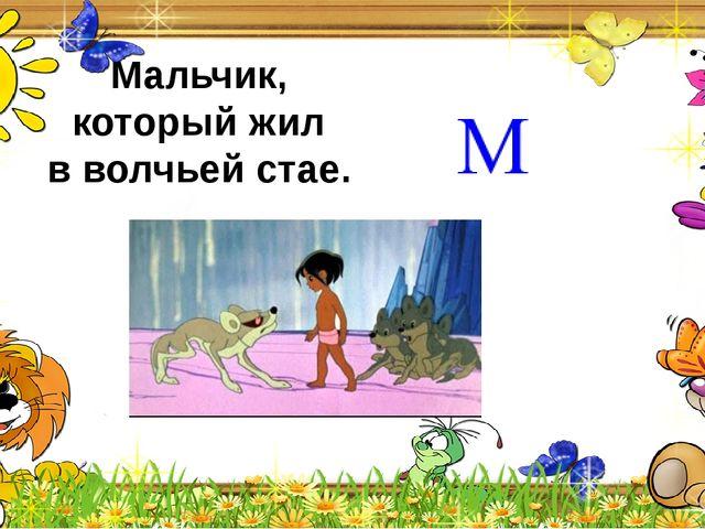 """""""Дед Мороз и лето"""""""