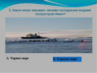 3. Какое море омывает своими холодными водами полуостров Ямал? А. Черное мор