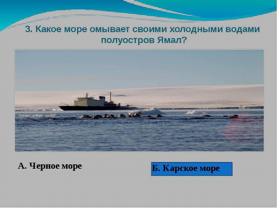 3. Какое море омывает своими холодными водами полуостров Ямал? А. Черное мор...