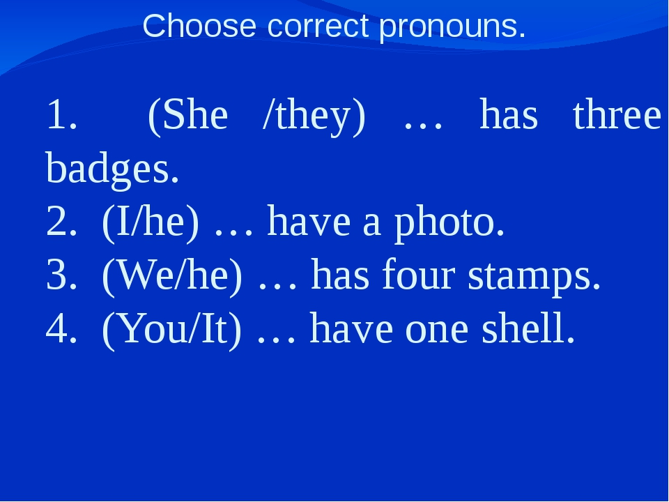 Choose correct pronouns. 1. (She /they) … has three badges. 2. (I/he) … have...