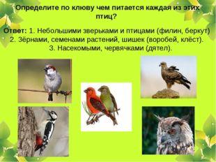 Определите по клюву чем питается каждая из этих птиц? Ответ: 1. Небольшими з