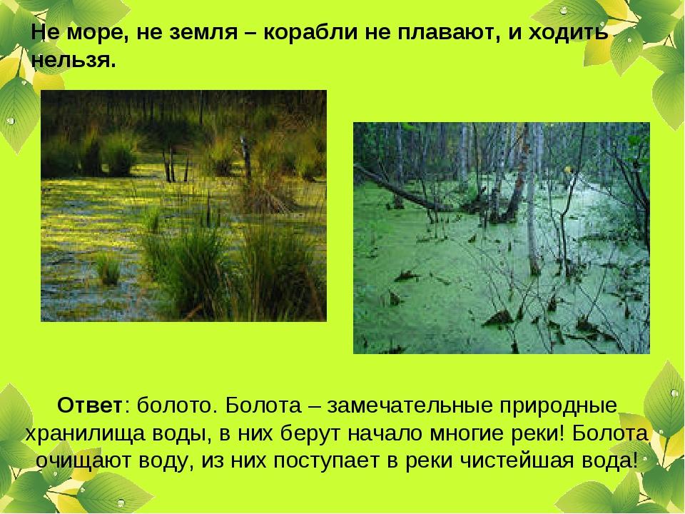 Не море, не земля – корабли не плавают, и ходить нельзя. Ответ: болото. Болот...