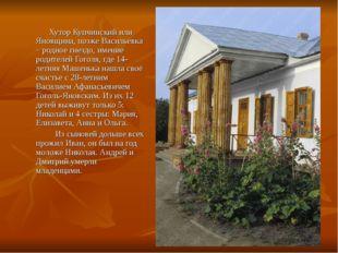 Хутор Купчинский или Яновщина, позже Васильевка – родное гнездо, имение роди