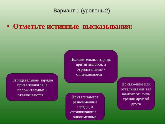 Вариант 1 (уровень 2) Отметьте истинные высказывания: Притягиваются разноимен...