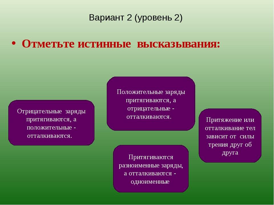 Вариант 2 (уровень 2) Отметьте истинные высказывания: Притягиваются разноимен...