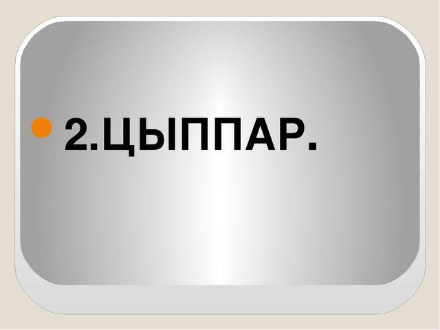 2.ЦЫППАР.