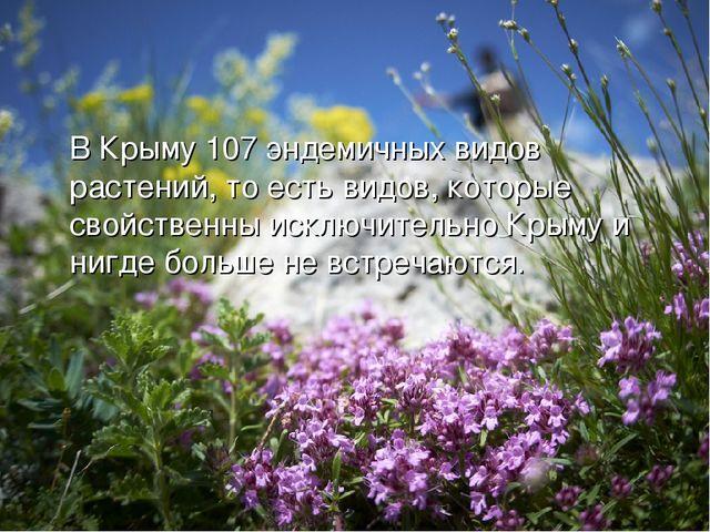 В Крыму 107 эндемичных видов растений, то есть видов, которые свойственны ис...