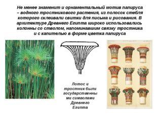 Не менее знаменит и орнаментальный мотив папируса – водного тростникового рас