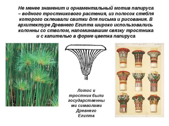 Не менее знаменит и орнаментальный мотив папируса – водного тростникового рас...