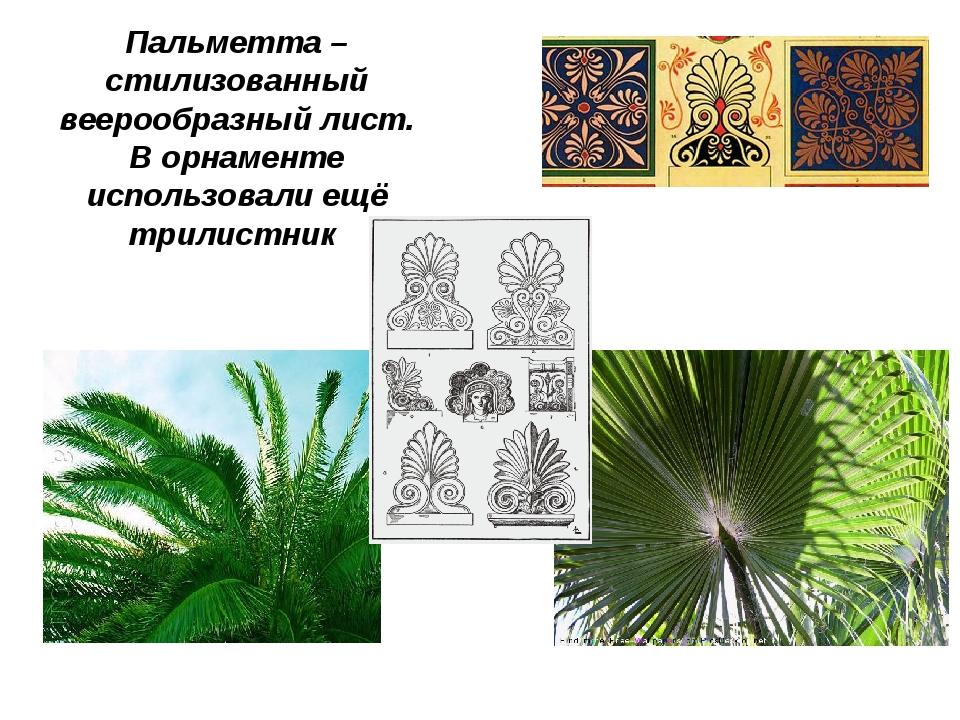 Пальметта – стилизованный веерообразный лист. В орнаменте использовали ещё тр...