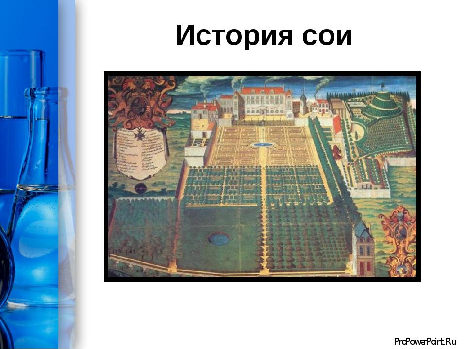 История сои ProPowerPoint.Ru