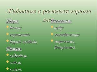 Животные и растения горного леса. Звери: белка; горностай; бурый медведь; Пти